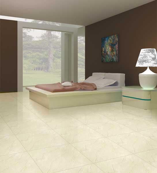 60x60 Cm Elegant Soluble Salt Bedroom