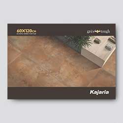 digital ceramic floor tiles