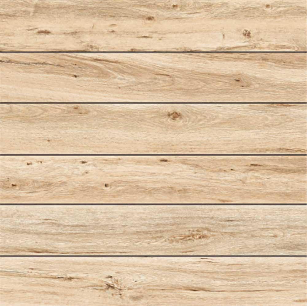 Assam Pine, Digital Exterior Collection